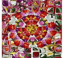 Jazzy Tulips by Antonia  Valentine