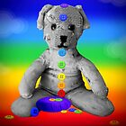 chakra ted by hennydesigns