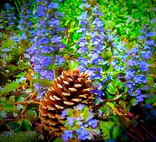 Ajuga Flowers & Pine Cone By Jonathan Green by Jonathan  Green