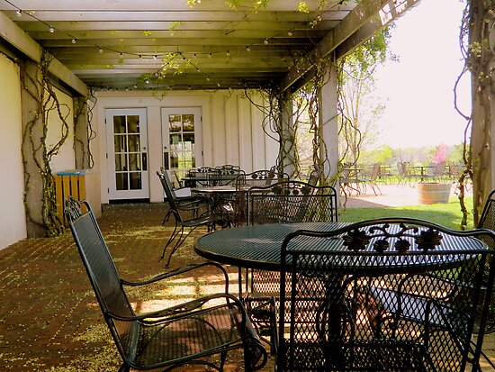 In the Shade of Day (the King Family Vineyard)  ^ by ctheworld