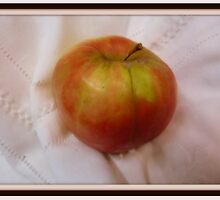 Jonathan Apple,Oh how many ways do I love him.Just the one actually, eaten straight from the tree. by Virginia McGowan