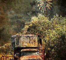 Rust Bucket by Kathryn Potempski