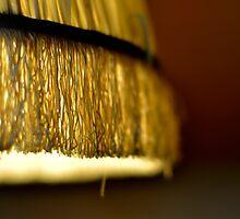Lamp Shade by Karen  Betts