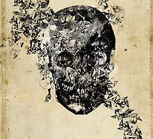 skull crystallisation by frederic levy-hadida
