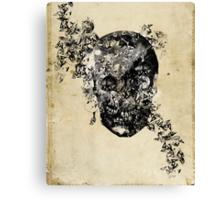 skull crystallisation Canvas Print