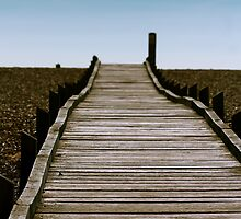 Dungeness Walkway by Ashley Beolens