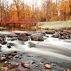 Splendid Crossing by Jeff Palm Photography