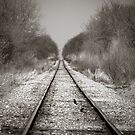 Rural Railroad Tracks by Marcia Rubin