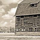 The Barn by Marcia Rubin