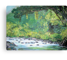 The Northern Sierra Madre National Park Canvas Print