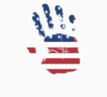 Flag Handprint - USA by SkinnyJoe