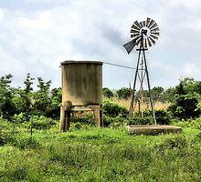 Cistern And Windmill by SuddenJim