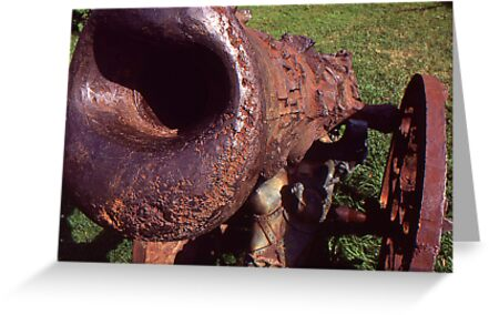 Old Cannon at the Park by Phil Campus