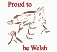 Proud to be Welsh Kids Clothes