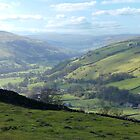 Swaledale by John (Mike)  Dobson