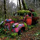 Poor Old Chevy by Charles &amp; Patricia   Harkins ~ Picture Oregon