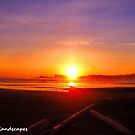 Desolate, driftwood and a magical sunset by Erykah36