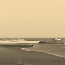 Sepia Sandy Bay by JenaHall