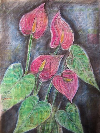 Anthurium by Thea (tatefox)