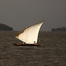 Fishing at Mfangano Island, lake Victoria. by Karue