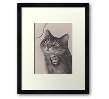 Cat Game Framed Print