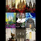 SLC Collage i phone Case by LaRae55