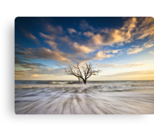 Charleston SC Botany Bay Edisto Island - Alone Canvas Print