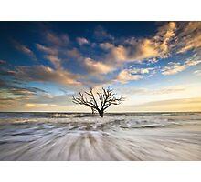 Charleston SC Botany Bay Edisto Island - Alone Photographic Print