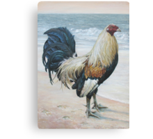 """""""Before The Fight"""" (Rooster 2) Canvas Print"""