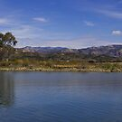 Cachuma Lake California #2 by Renee D. Miranda