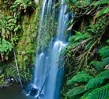 Beauchamp Falls, Ottway National Park , Victoria, Australia by Julia Harwood