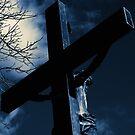 My Sweet Jesus by reindeer