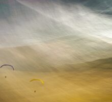 Gliders by Mark Wade