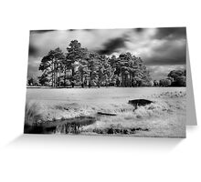 Bridge and Trees in The Phoenix Park Greeting Card