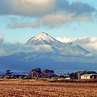 Mount Taranaki by Anthony Woolley