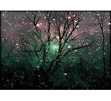 Forest Magic © Photographic Print