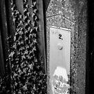 Juxtaposition - Graffiti Vines by Rhys Herbert