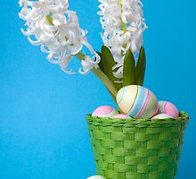 Easter composition  with white hyacinth and painted eggs by torishaa