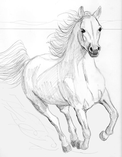 Running arabian horse drawing - photo#8