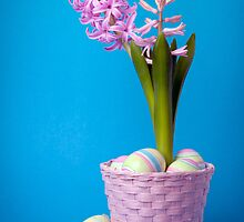 Easter composition with pink hyacinth and painted eggs by torishaa