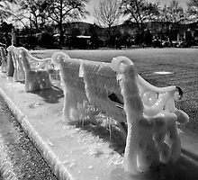 Frozen by Nikolas Mavrikakis
