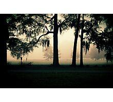 to feel the fresh air again Photographic Print