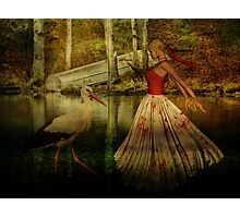 Voices in Solitude Photographic Print