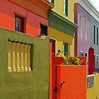 Kaleidoscope of colour by Dan MacKenzie
