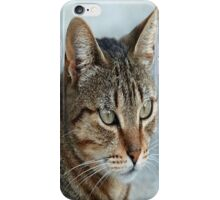 Stunning Tabby Cat Close Up Portrait iPhone Case/Skin