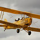 Bombs away! Tiger Moth by naemick