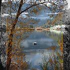 Lake Wakatipu by Karen Lewis