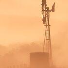Windmill at Dawn by Julia Ott
