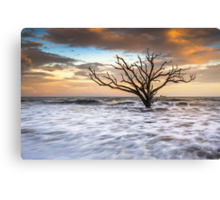 Botany Bay Edisto Island SC Boneyard Beach Sunset Canvas Print
