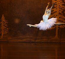 Australian Ballet by David Petranker